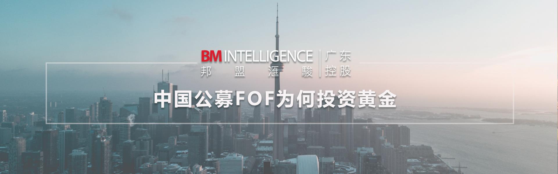 中国公募FoF为何投资黄金-上篇